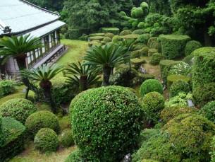 庭園 築山の上から